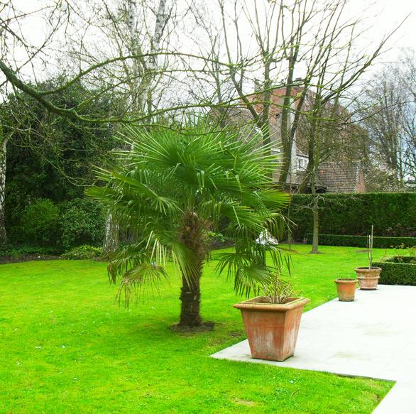 Entretien d jardin for Entretien jardin 02